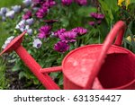 Red Watering Can In Garden Of...