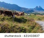 needles of arves in haute... | Shutterstock . vector #631433837