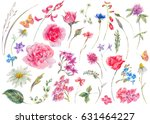 watercolor set of vintage... | Shutterstock . vector #631464227