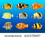 different kinds of fish under... | Shutterstock .eps vector #631578407