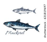 mackerel sea fish isolated... | Shutterstock .eps vector #631819697
