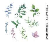 painted watercolor set of... | Shutterstock . vector #631966817