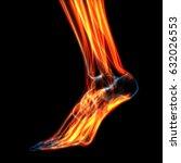 human leg muscles anatomy. 3d | Shutterstock . vector #632026553