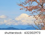 sakura cherry blossom with... | Shutterstock . vector #632302973