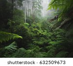 lush rain forest with morning... | Shutterstock . vector #632509673