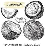 hand drawn coconut set. coconut ... | Shutterstock .eps vector #632701133
