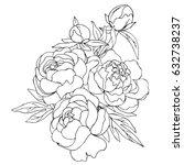 vector black white contour...   Shutterstock .eps vector #632738237