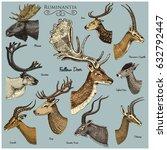 big set of horn  antlers... | Shutterstock .eps vector #632792447