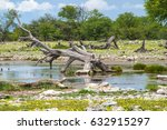 water point in rain season at... | Shutterstock . vector #632915297