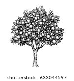hand drawn vector illustration... | Shutterstock .eps vector #633044597