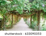 walkway with trellis of ivy and ... | Shutterstock . vector #633090353