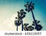 beautiful palm tree on blue sky ... | Shutterstock . vector #633113057