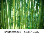 bamboo forest background | Shutterstock . vector #633142637