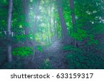 forest by dawn time | Shutterstock . vector #633159317