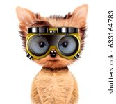 funny dog in protective glasses ... | Shutterstock . vector #633164783