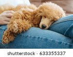 young girl is resting with a... | Shutterstock . vector #633355337