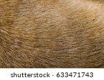 Dog Pattern Short Hair.