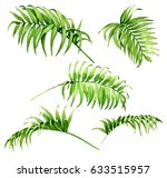 hand drawn branches and leaves... | Shutterstock . vector #633515957