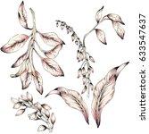 watercolor leaf illustration   Shutterstock . vector #633547637