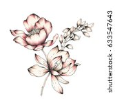 watercolor flower illustration | Shutterstock . vector #633547643