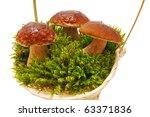 Three Mushrooms On Moss Over...