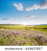 stunning fresh flowers and blue ...   Shutterstock . vector #633837857