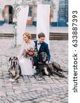 Small photo of Happy wedding couple fondling their pet dogs sitting on their haunches in the Lviv city center