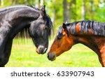 Stock photo horse love portrait 633907943
