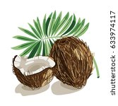 coconuts with leaves. vector... | Shutterstock .eps vector #633974117