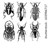 insect stipple drawing set... | Shutterstock .eps vector #633986717