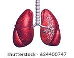 lung disease.3d render | Shutterstock . vector #634400747