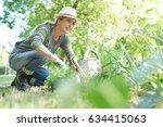 blond woman with hat gardening | Shutterstock . vector #634415063