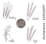 organic grain sketch... | Shutterstock .eps vector #634526597