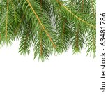 fir tree | Shutterstock . vector #63481786