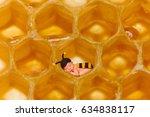 newborn baby in bee outfit... | Shutterstock . vector #634838117