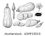 zucchini hand drawn vector...   Shutterstock .eps vector #634915013
