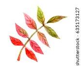 autumn red rowan bunch leaves... | Shutterstock . vector #635173127