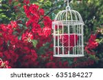 Heart Inside The Bird Cage At...