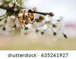 wedding rings on a tree branch | Shutterstock . vector #635261927