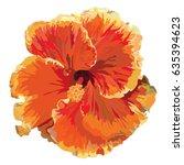 bright orange double hibiscus... | Shutterstock .eps vector #635394623