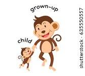 opposite words child and grown... | Shutterstock .eps vector #635550557