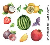 watercolor organic set of... | Shutterstock . vector #635560943
