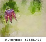 watercolour painting of... | Shutterstock . vector #635581433