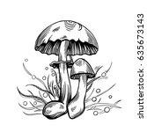 yellow staining mushroom with... | Shutterstock .eps vector #635673143