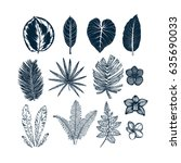 tropical collection. botanical... | Shutterstock .eps vector #635690033