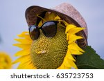 sunflowers face with sun glass... | Shutterstock . vector #635723753