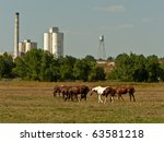 Horses and Old Mills - stock photo