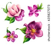 botanical illustration ... | Shutterstock . vector #635827073