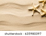 Summer Background   Starfish O...