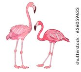 flamingo color vector... | Shutterstock .eps vector #636059633
